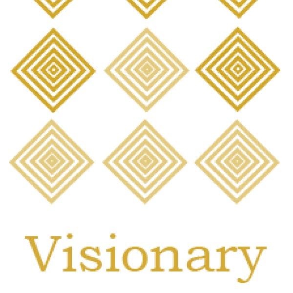 VISIONARY FRAGMENT, LDA.
